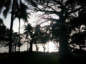 beach_life12